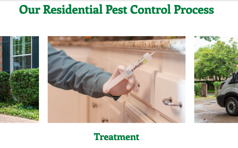 Pestmaster of Columbus Launches New Professional Pest Control and Wildlife Removal Franchise in Columbus Ohio